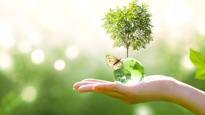 Défi 2 :   Les transformations induites par la transition écologique et le changement climatique